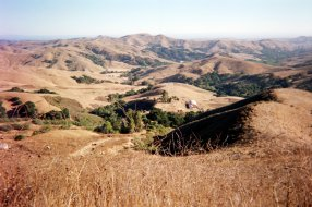 San Luis Obispo County | Fujifilm disposable camera, July 2016 by Tim Worden