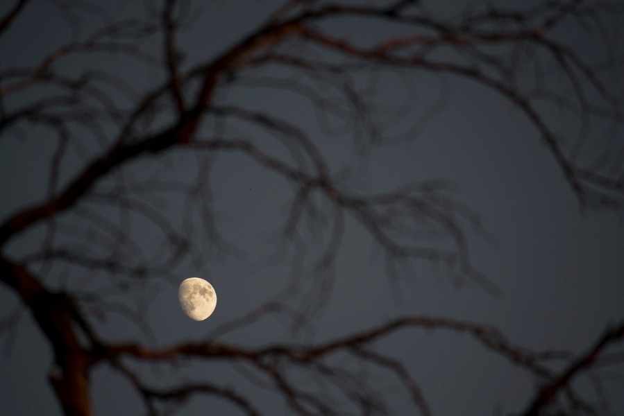 Moon viewed from Carbon Canyon